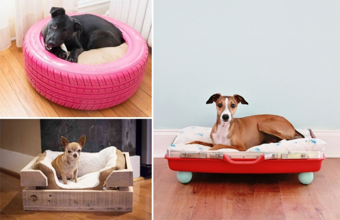 camas-criativas-cachorros