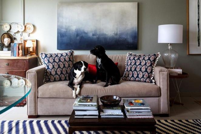 decoração-casa-pets